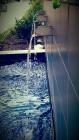 By Ashley Strange | Refreashing