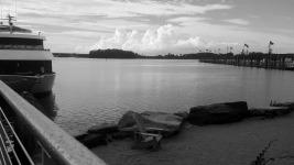 By Ashley Strange   National Harbor